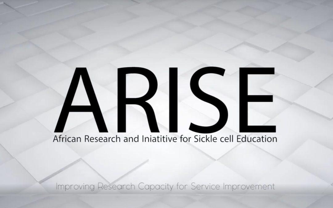 Alla scoperta del progetto ARISE: intervista a Fedele Bonifazi